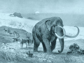 Mastadon illustration by Heinrich Harder