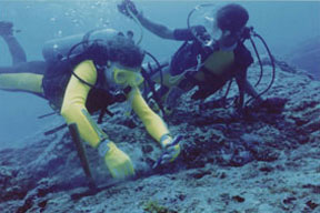 Image of Robert Schoch diving the underwater monument at Yonaguni, Japan